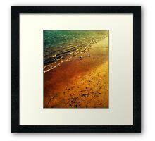 Seagulls at Sunset Framed Print