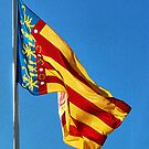 Flag of the Comunitat Valenciana, Spain by Squealia