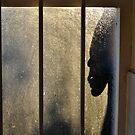 Bathroom burglar by Karen01