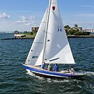 Blue sailboat leaving the Newport Harbor | Bay series 2008 by Jack McCabe