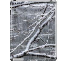 Winter Snow iPad Case/Skin