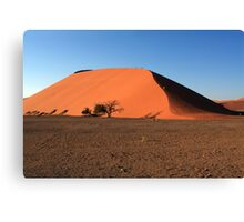 Dune 45 Namibia Canvas Print