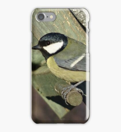 Coal Tit iPhone Case/Skin