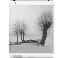 Weeping winter willow iPad Case/Skin