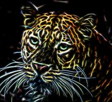 Leopard Glow by Judy Vincent