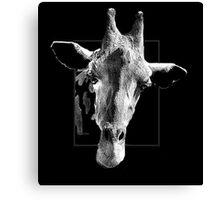Giraffe through Glass Canvas Print