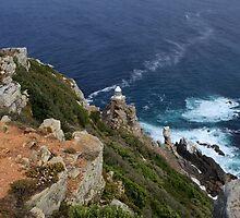 Cape of Good Hope by aidan  moran