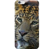 Leopard Painted iPhone Case/Skin