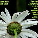 HAPPY BIRTHDAY SIS by shellyb