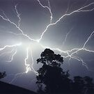 Lightning Photography Series I by Michael Bath