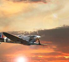 Spitfire Mk IX by John Hooton