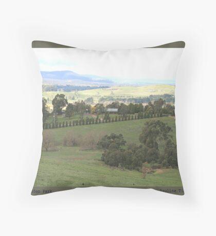 Eden Park Victoria Australia Throw Pillow