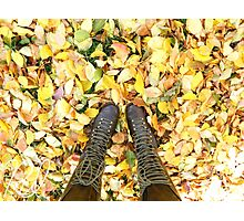 Fall Leaves Nature Photographic Print Photographic Print