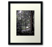 MIST ON THE PARK Framed Print