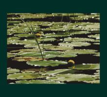 The River Shallows - Water Lilies T-Shirt