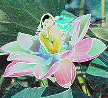 Lotus Fairy by tkrosevear