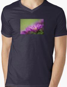 Dewy Purple Asters Mens V-Neck T-Shirt