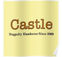 Castle Since Dark Poster