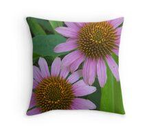 Purple Echinacea Throw Pillow