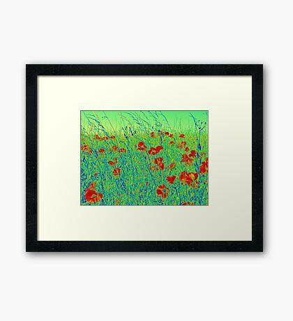 The Poppy Field Framed Print