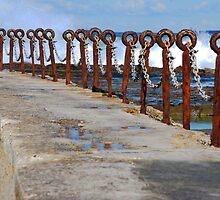 Rusty Chain Fence - Canoe Pool, Newcastle Beach NSW by Bev Woodman