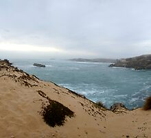 Ocean Edge by Steven Maynard