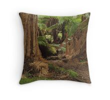 fern lushness at St Columba Falls, Tasmania Throw Pillow
