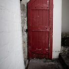 The Red Door by DionM