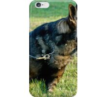 Grizzley iPhone Case/Skin