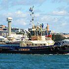 Newcastle Harbour - Switzer Hamilton Tug Boat by Phil Woodman