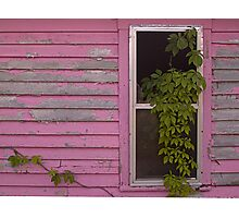 Window, Pigeon Forge, Tennessee Photographic Print