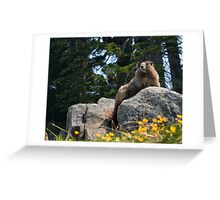King of the Hill Greeting Card