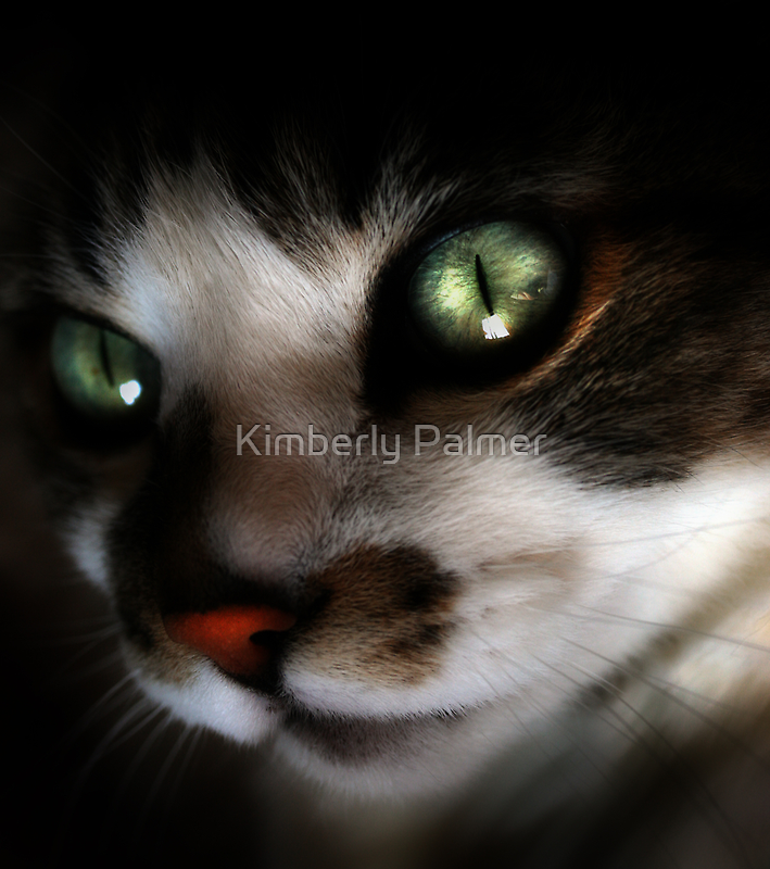 Green Eyed Babe by Kimberly Palmer