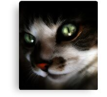 Green Eyed Babe Canvas Print