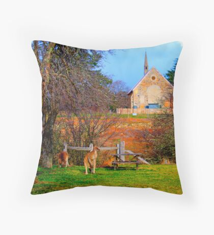 Church Service - Hill End - The HDR Series Throw Pillow