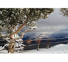 Snow in the Grand Canyon Photographic Print