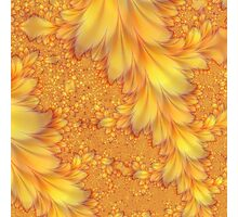 Fractal Feathers Photographic Print