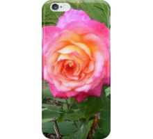 Rose garden bloom iPhone Case/Skin