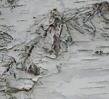 Mountain Range on Ice Plateau by Marguerite Foxon