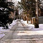 Winter Lane, Ottawa, ON Canada by Shulie1