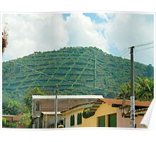"""El Salvador #3 - Village view of the """"Gourmet"""" coffee plantation. Poster"""