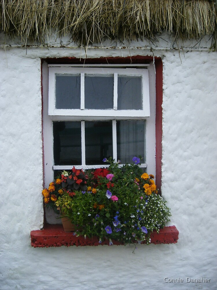 Window of thatched cottage by Connie  Danaher