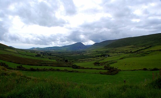 How Green is my Valley by Pat Herlihy