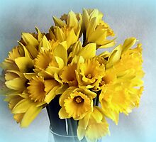 Mini Daffodil Delight by Bill Lighterness