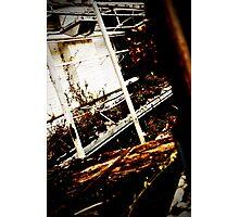 Overrun Photographic Print