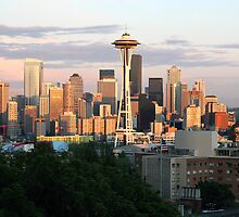 Seattle Sunset by Dana Brooks