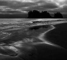 No Sunset LaPush Beach Washington by EvaMcDermott