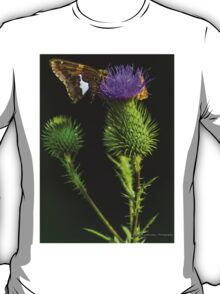 Butterfly on a Purple Wildflower T-Shirt
