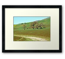Peaceful Fields in the Golden West Framed Print