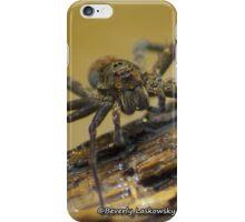 Big Wild Wolf Spider iPhone Case/Skin